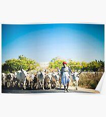 The Shepherd 2 Poster