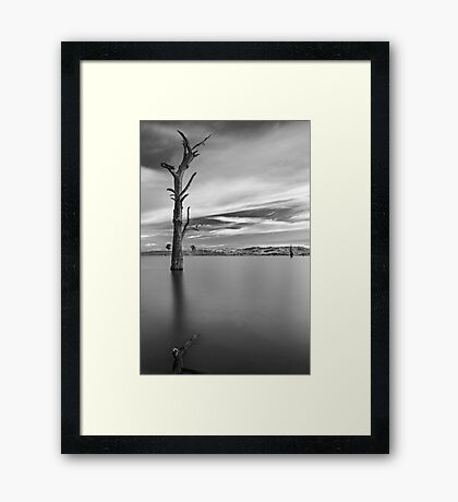Portrait of Solitude Framed Print