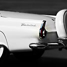 """Thunderbird"" by Gail Jones"