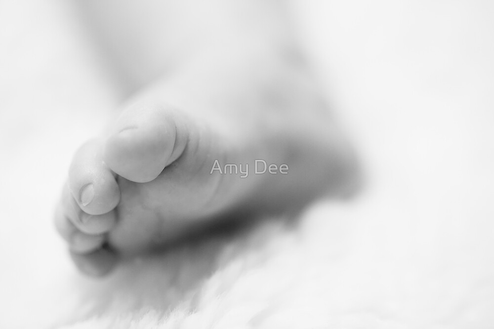 Soft Steps by Amy Dee