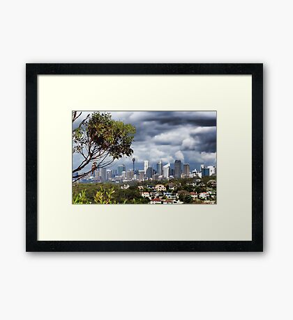 A Tree with a View Framed Print