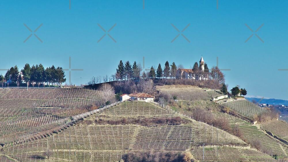 Church among the Vineyards by photorolandi