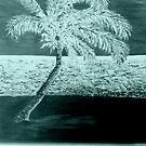 Night Palm Tree by sandidobe