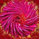 Blazing Flower Twirl by MarcoMeyo18