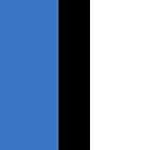 Estonia Flag by pjwuebker
