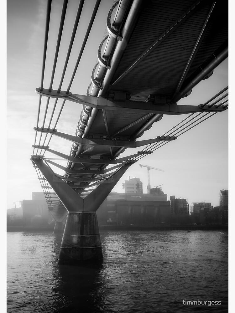 Under the Millennium Bridge by timmburgess