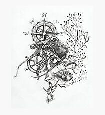 Octopus's garden Photographic Print