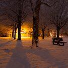 Gildredge park snow light by willgudgeon