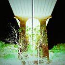 Other Tree Under Bridge by MarcoMeyo18