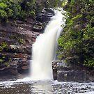 Lower Gledhill Falls, Ku-ring-gai Chase National Park, NSW by Doug Cliff