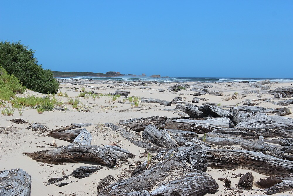 Pieman Heads beach by gaylene