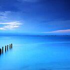 Into the Blue by Arfan Habib