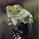 Green Frog by ZiyaEris