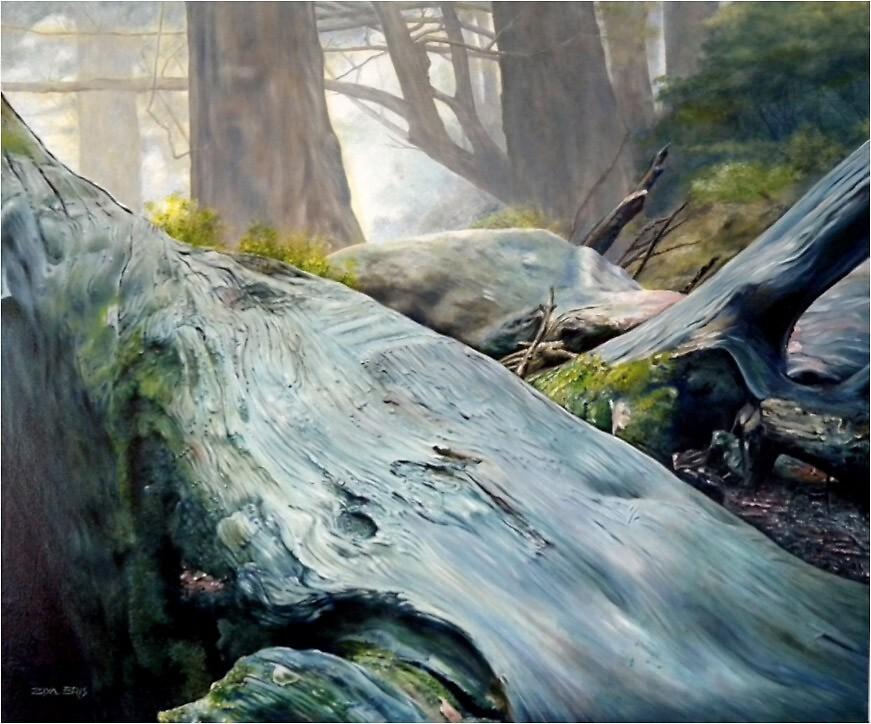 Rain Forest 2 by ZiyaEris