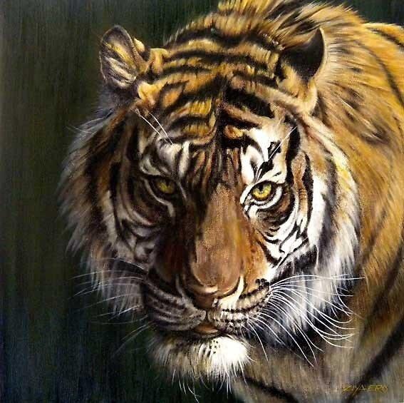 Tiger by ZiyaEris