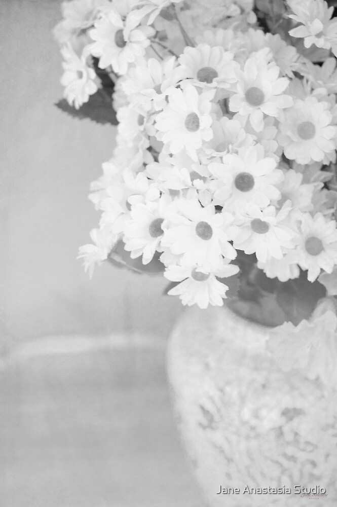 ...daisies.......black and white still life........... by Jane Anastasia Studio