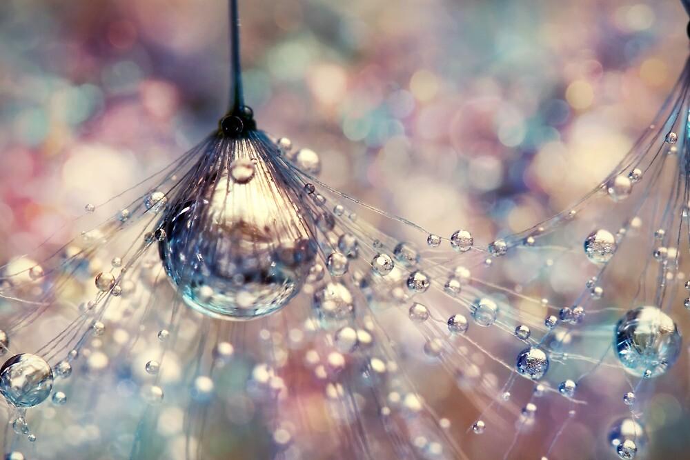 Rainbow Rain by Sharon Johnstone