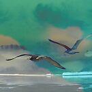 Seagulls by Maj-Britt Simble