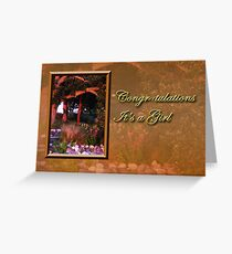 Congratulations It's A Girl Woods Greeting Card