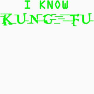 I know Kung Fu by Technohippy