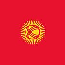 Kyrgyzstan Flag  by pjwuebker