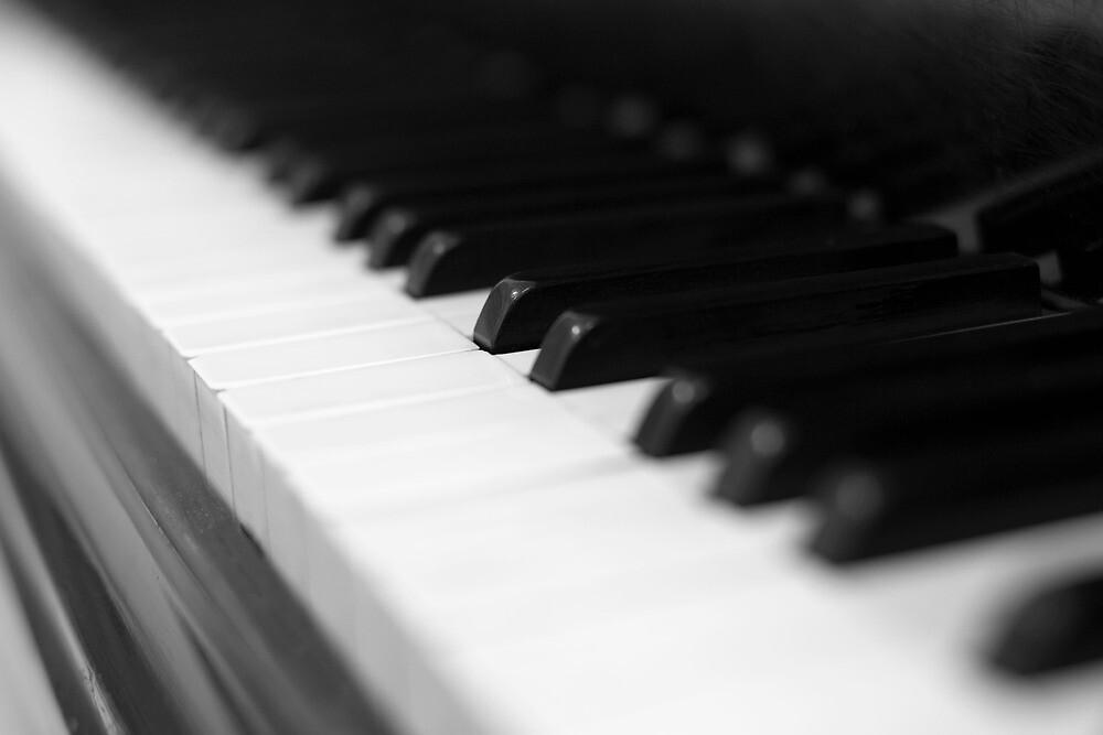 piano keys by Falko Follert
