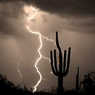 Giant Saguaro Cactus Lightning Strike Sepia by Bo Insogna