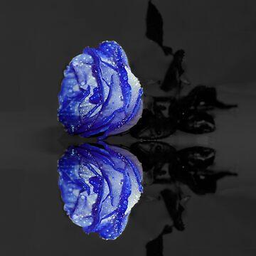 Blue Rose by JuliaFineArt