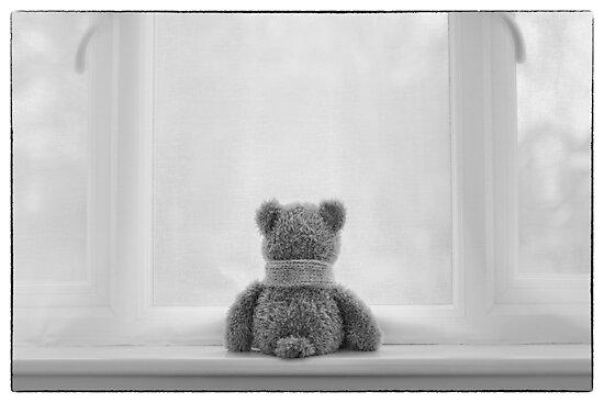 Quot Teddy Bear Waiting Quot Photographic Print By Nataliekinnear