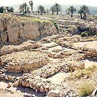 Israel - Megiddo - The Altar by Shulie1