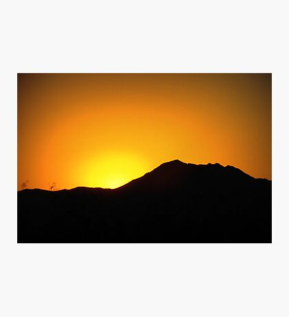 Morning Glory in Marana Photographic Print