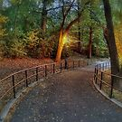 Late afternoon in the park2 by henuly1