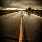 Desolation Road by Bob Larson