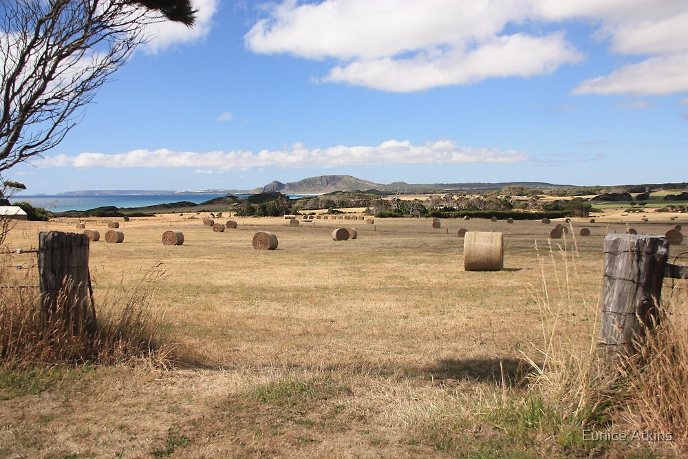Hay finished. by Eunice Atkins