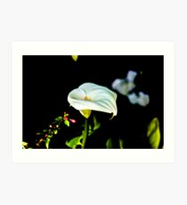 Flower Love Kunstdruck