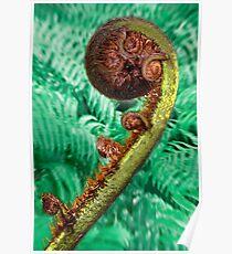 Jade coloured Fern. Poster