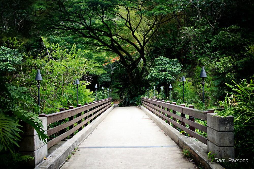 Bridge Walk by Sam  Parsons