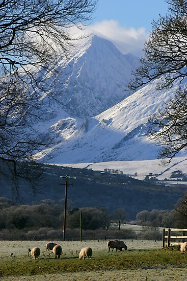 Killarney, Kerry, Ireland by David O'Riordan