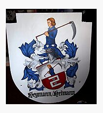 Coat of Arms (painting) Photographic Print