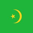 Mauritania Flag by pjwuebker