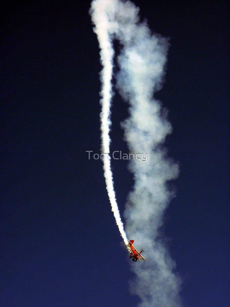 Wing Walkers by Tom Clancy