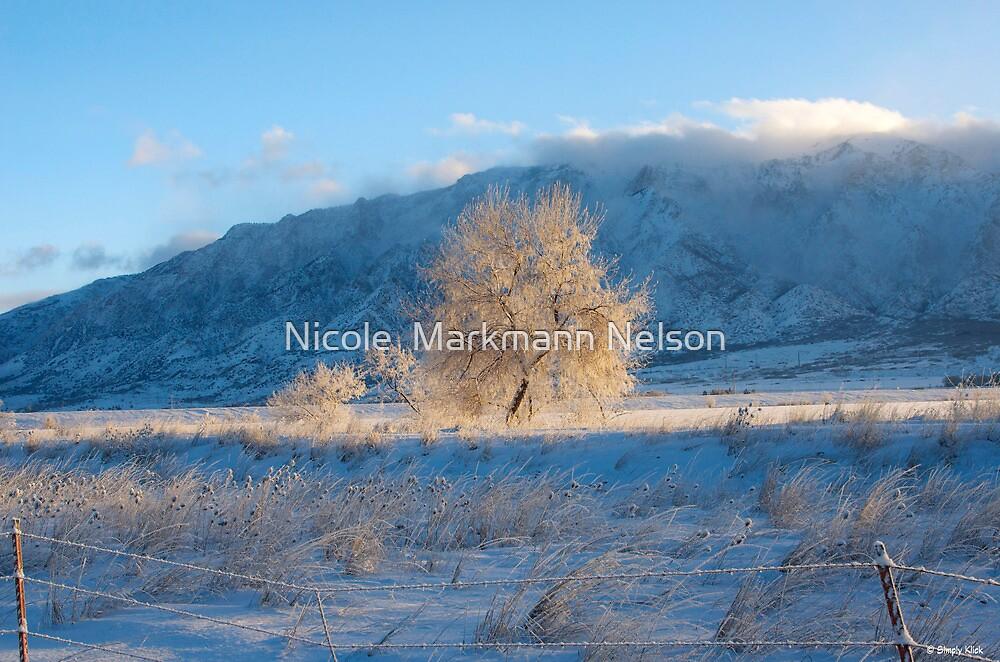 Sun Tree  by Nicole  Markmann Nelson