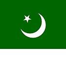 Pakistan Flag by pjwuebker