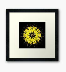 Spring Flower Kaleidoscope 04 Framed Print