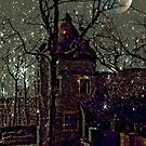 Enchanted Castle in the Moonlight by Jane Neill-Hancock