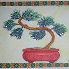Bonsai Pine by Susan Genge