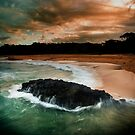 The Reef by David Haworth
