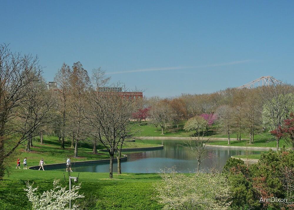 Parkland in St.Louis by AnnDixon