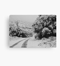 Back Road Canvas Print