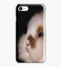 Lionhead bunny, sitting iPhone Case/Skin